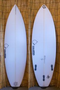 ATOM Surfboard Squawker v2 model